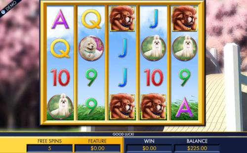 A Bark in the Park review on Review Slots