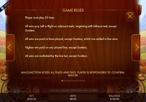 Bier Fest Review Slots Game rules - Player must play 25 lines. All wins pay left to right on adjacent reeles, beginning with the leftmost reel, except scatters.