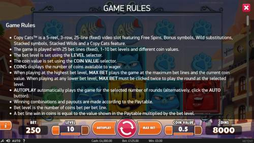 Copy Cats Review Slots General Game Rules
