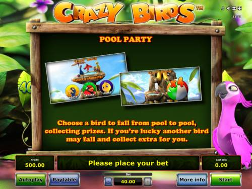 Crazy Birds Review Slots Pool Party