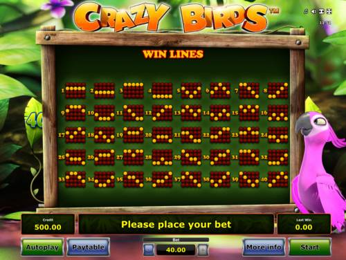 Crazy Birds Review Slots Paylines 1-40