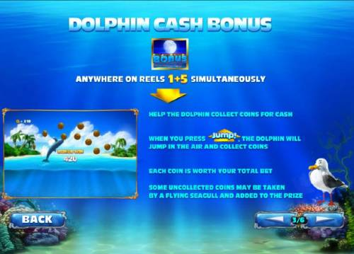 Dolphin Cash Review Slots bonus feature - rules and how to play