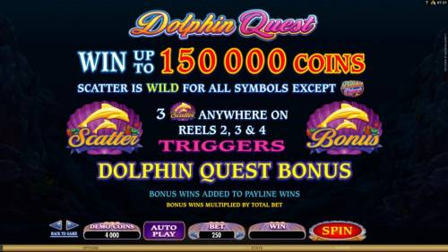 Dolphin Quest review on Review Slots