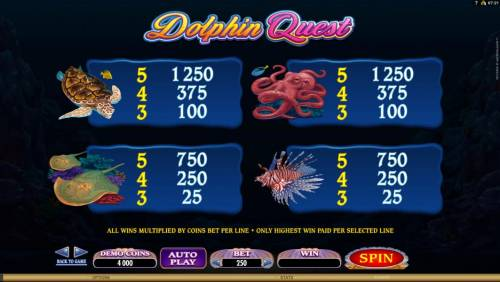Dolphin Quest Review Slots slot game medium value symbols paytable