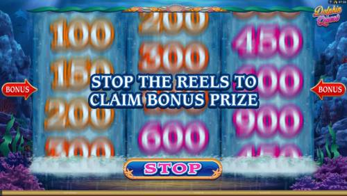 Dolphin Quest Review Slots stop the reels to claim bonus prize