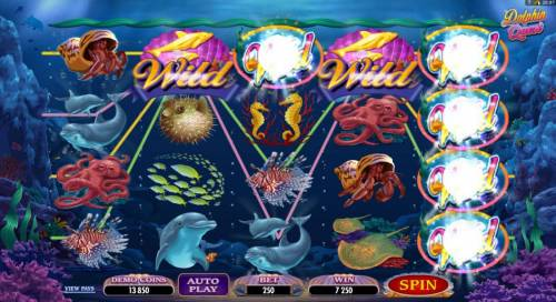 Dolphin Quest Review Slots Multiple winning paylines triggers a 7250 big win!