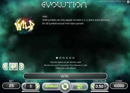 Evolution Review Slots wild  symbols and rules