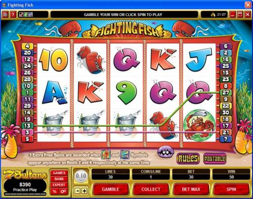 Fighting Fish review on Review Slots