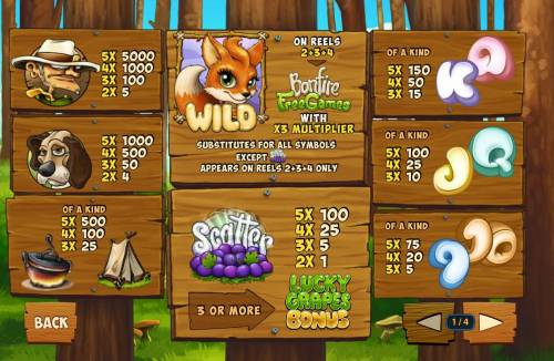 Foxy Fortunes Review Slots Slot game symbols paytable.