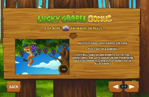 Foxy Fortunes Review Slots Lucky Grapes Bonus Rules