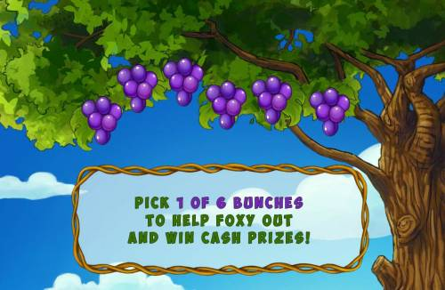 Foxy Fortunes Review Slots Pick 1 of 6 bunches to help Foxy out and win cash prizes.