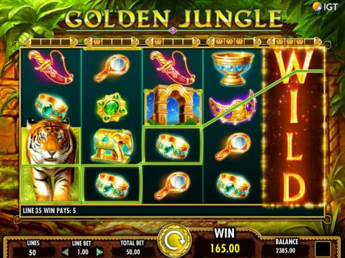 Golden Jungle Review Slots Multiple winning paylines triggers a 165.00 big win!