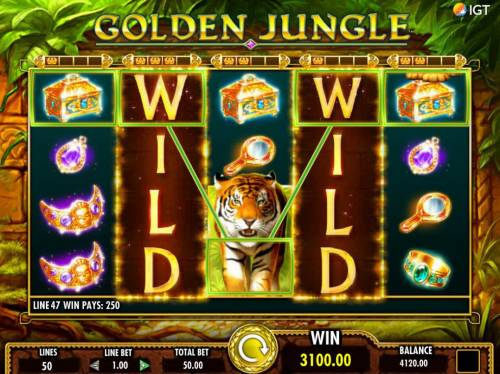 Golden Jungle Review Slots Stacked wilds trigger multiple winning combinations leading to a 3100.00 jackpot win.