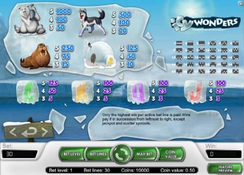 Icy Wonders Review Slots slot game symbols paytable and payline diagrams