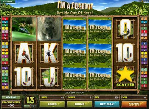 I'M A Celebrity Get Me Out Of Here! Review Slots Main game board featuring five reels and 40 paylines with a $1,000 max payout