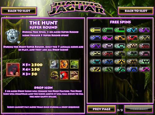 Jumping Jaguar Review Slots Bonus Round Rules