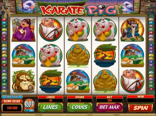 Karate Pig Review Slots main game board featuring 5 reels and 40 paylines