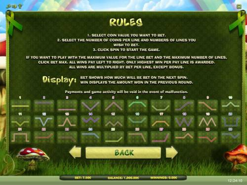 Lucky Leprechaun Review Slots General Game Rules and Payline Diagrams 1-30