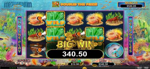 Megaquarium Review Slots Multiple winning paylines triggers a 340.50 big win!