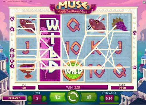 Muse Review Slots multiple winning paylines triggers a $228 big win