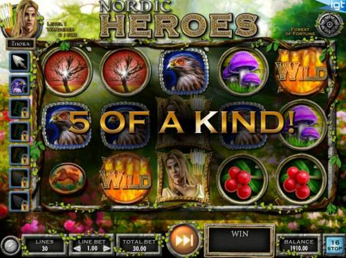 Nordic Heroes Review Slots A five of a kind is triggered.