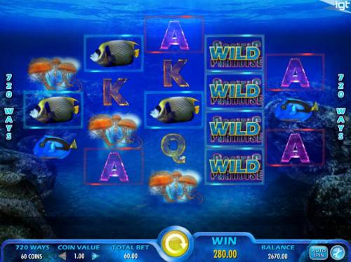 Pacific Paradise Review Slots Game logo wild symbols trigger multiple winning combinations and a big win.