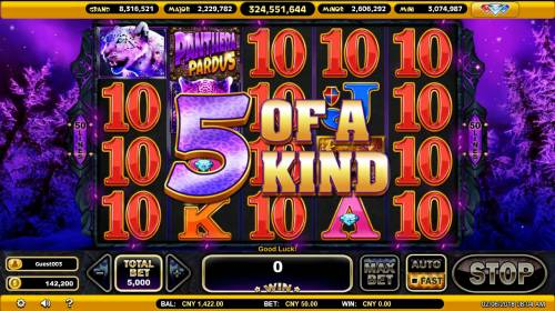 Panthera Pardus Review Slots A winning five of a kind