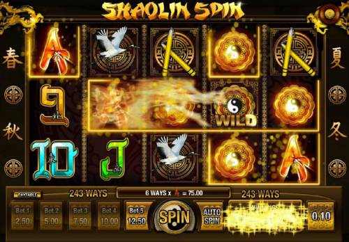 Shaolin Spin Review Slots Another big win triggered by the expanding wild symbol