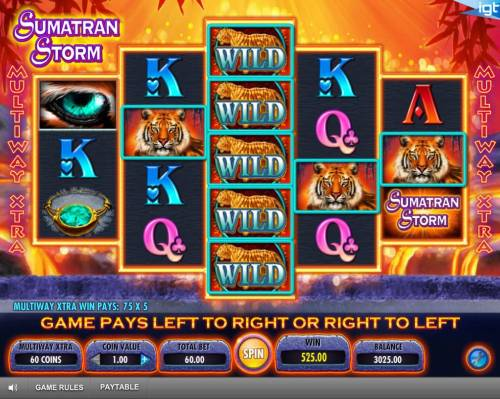 Sumatran Storm Review Slots Game pays left to right and right to left.