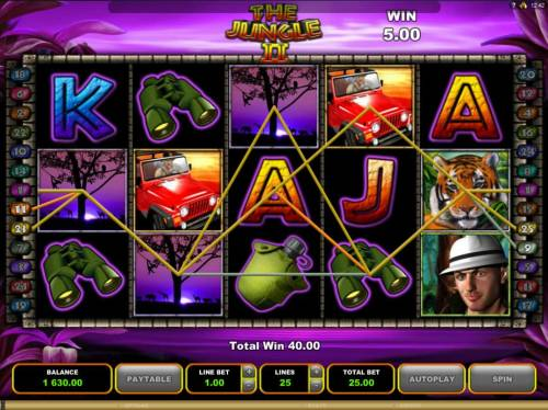 The Jungle II Review Slots Multiple winning paylines during the Free Games feature.