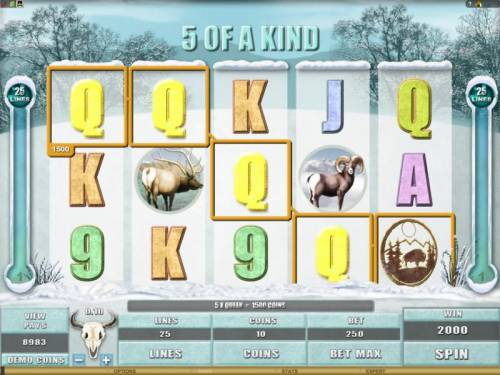 White Buffalo Review Slots here is an example of a 5 of a kind 2000 coin big win