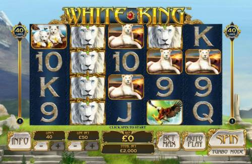 White King Review Slots Main game board featuring five reels and 40 paylines with a $50,000 max payout