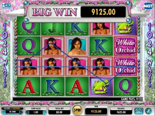 White Orchid Review Slots here we have a 9125 coin big win jackpot