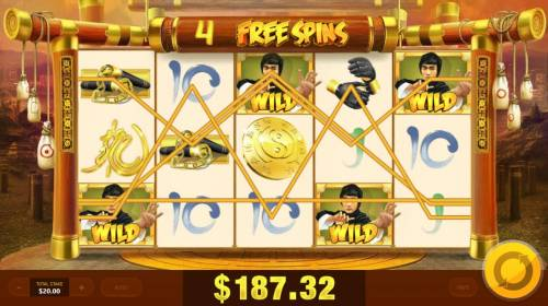 Wild Fight Review Slots Multiple winning paylines triggered during the free spins bonus feature.