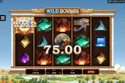 Wild Scarabs review on Review Slots