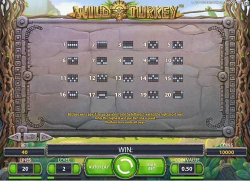 Wild Turkey Review Slots payline diagrams