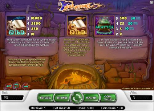 Wild Witches Review Slots wild and scatter symbols game rules