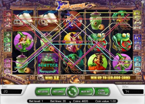 Wild Witches Review Slots multiple winning paylines triggers a 74 coin jackpot