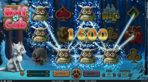 Wolf Cub Review Slots Multiple winning paylines triggers a 1,600.00 big win!