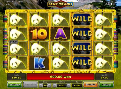Bear Tracks Review Slots A 600.00 big win triggered by multiple winning paylines during the Free Spins feature.