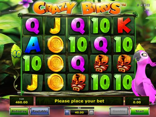 Crazy Birds Review Slots Main Game Board